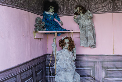 """Creepy dolls adorn the """"Dollhouse"""" at the Wellington Drive-Thru Creepy Crawl at Village Park, Wednesday, October 14, 2020. The Creepy Crawl will take place on Saturday, October 17 starting at 6 p.m. Visitors will drive their cars through Village Park in one direction and pass a series of scare areas, including an area designed for older kids with more intense scares. (JOSEPH FORZANO / THE PALM BEACH POST)"""