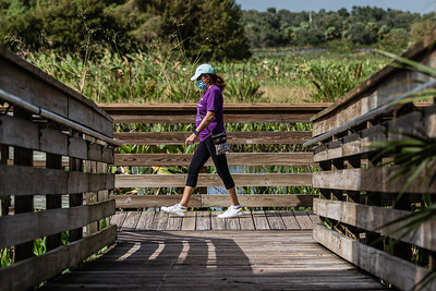 A woman walks along the 1 mile boardwalk loop at Green Cay Nature Center and Wetlands in Boynton Beach, Thursday, November 5, 2020. Due to COVID-19 restrictions, everyone must wear a mask if they can't social distance, and the boardwalk is one direction only. (JOSEPH FORZANO / THE PALM BEACH POST)