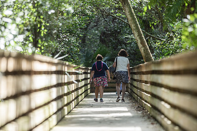 Two friends walk along the 1 mile boardwalk loop at Green Cay Nature Center and Wetlands in Boynton Beach, Thursday, November 5, 2020. Due to COVID-19 restrictions, everyone must wear a mask if they can't social distance, and the boardwalk is one direction only. (JOSEPH FORZANO / THE PALM BEACH POST)