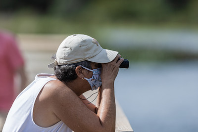 A woman uses a pair of binoculars to bird watch at Green Cay Nature Center and Wetlands in Boynton Beach, Thursday, November 5, 2020. Due to COVID-19 restrictions, everyone must wear a mask if they can't social distance, and the boardwalk is one direction only. (JOSEPH FORZANO / THE PALM BEACH POST)