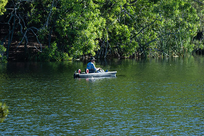 A man fishes from a small boat in the lake at Okeeheelee Park in West Palm Beach, Friday, November 13, 2020. Largemouth bass, channel catfish, bluegills,  redear sunfish, Mayan cichlid and spotted tilapia can be found in the lakes at Okeeheelee. (JOSEPH FORZANO / THE PALM BEACH POST)
