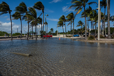 Flooding in the parking lot of the Boynton Inlet due to high tides, Thursday, November 19, 2020. (JOSEPH FORZANO / THE PALM BEACH POST)