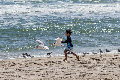 Maddox Pitts, 5 1/2, from West Delray Beach, chases seagulls and skimmers along the shoreine on Delray Beach, Tuesday, November 24, 2020. Maddox was enjoying a day at the beach with his mother, Stephanie and brother Greyson. (JOSEPH FORZANO / THE PALM BEACH POST)