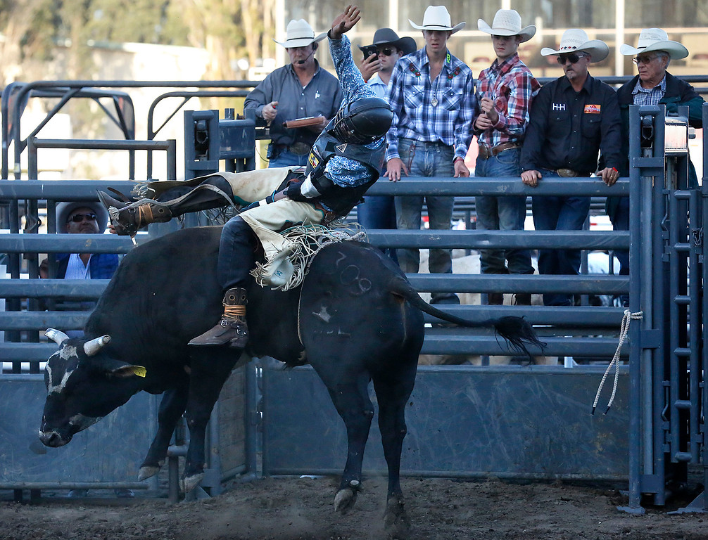 . Anthony Lyons hangs on while competing in the Professional Bull Riding event at the Salinas Rodeo grounds on Wednesday July 19, 2017. (David Royal/Herald Correspondent)