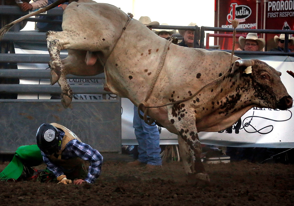 . Brian Remmer is nearly stepped on after being ejected by his bull while competing in the Professional Bull Riding event at the Salinas Rodeo grounds on Wednesday July 19, 2017. (David Royal/Herald Correspondent)