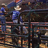Rider look over the bulls before the contest begins during the first round at the Professional Bull Riders Built Ford Tough Series, Chute Out presented by Cooper Tires at the Scottrade Center in St. Louis, Missouri