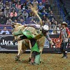 Rider BRADY SIMS  get bucked from bull FARGO during the first round at the Professional Bull Riders Built Ford Tough Series, Bass Pro Chute Out presented by Cooper Tires at the Scottrade Center in St. Louis, Missouri