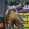 Rider CODY NANCE leans to keep his balance on bull LONGMIRE during the final round at the Professional Bull Riders Built Ford Tough Series, Bass Pro Chute Out presented by Cooper Tires at the Scottrade Center in St. Louis, Missouri