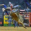 Rider RENATO NUNES  goes flying after being bucked by bull DIESEL during the championship round at the Professional Bull Riders Built Ford Tough Series, Bass Pro Chute Out presented by Cooper Tires at the Scottrade Center in St. Louis, Missouri