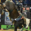 Rider SEAN WILLINGHAM on bull SLINGER JR.  during the final round at the Professional Bull Riders Built Ford Tough Series, Bass Pro Chute Out presented by Cooper Tires at the Scottrade Center in St. Louis, Missouri