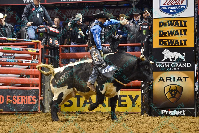 Rider J.W. HARRIS and bull WESLEY'S PET during the third round at the Professional Bull Riders Built Ford Tough Series, Bass Pro Chute Out presented by Cooper Tires at the Scottrade Center in St. Louis, Missouri
