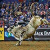 Rider MIKE LEE starts to fall off bull JOHNNY WALKER BLACK JR. during the first round at the Professional Bull Riders Built Ford Tough Series, Bass Pro Chute Out presented by Cooper Tires at the Scottrade Center in St. Louis, Missouri
