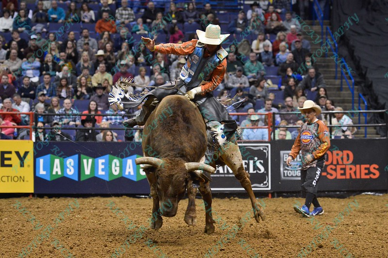 Rider DAVE MASON during the first round at the Professional Bull Riders Built Ford Tough Series, Bass Pro Chute Out presented by Cooper Tires at the Scottrade Center in St. Louis, Missouri