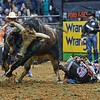 Rider KASEY HAYES  hits the ground hard after being bucked from bull WESTERN WAY during the first round at the Professional Bull Riders Built Ford Tough Series, Bass Pro Chute Out presented by Cooper Tires at the Scottrade Center in St. Louis, Missouri
