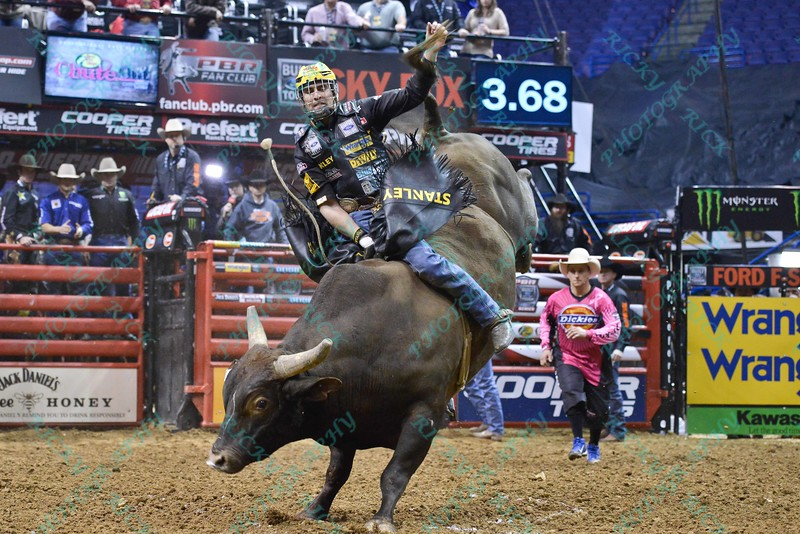 Rider SILVANO ALVES  on bull CHILI DOG during the second round at the Professional Bull Riders Built Ford Tough Series presented by Cooper Tires at the Scottrade Center in St. Louis, Missouri