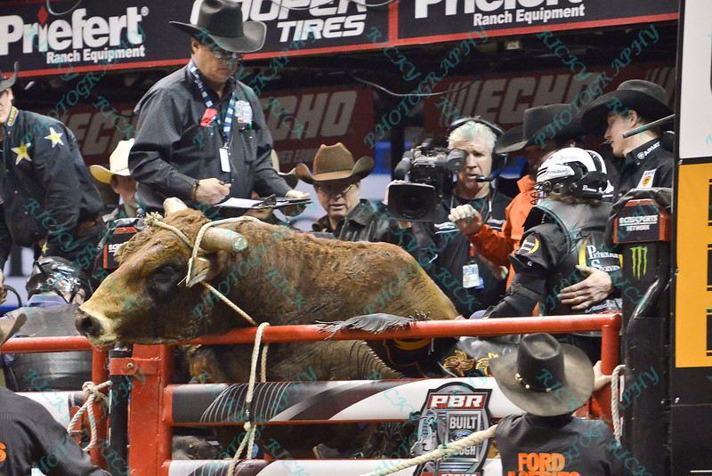 Rider STETSON LAWRENCE has to hold on as bull OFF THE GRID attempts to climb out of the chute during the final round at the Professional Bull Riders Built Ford Tough Series, Bass Pro Chute Out presented by Cooper Tires at the Scottrade Center in St. Louis, Missouri