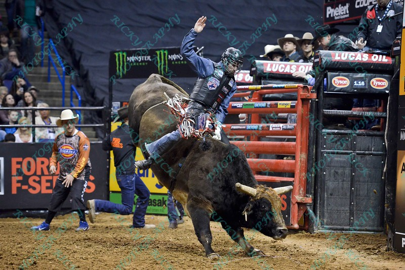 Rider KASEY HAYES  shows strong form on bull WESTERN WAY during the first round at the Professional Bull Riders Built Ford Tough Series, Chute Out presented by Cooper Tires at the Scottrade Center in St. Louis, Missouri