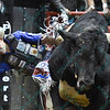 Rider RENATO NUNES  starts to fall off of bull CRYSTAL PISTOL during the final round at the Professional Bull Riders Built Ford Tough Series, Bass Pro Chute Out presented by Cooper Tires at the Scottrade Center in St. Louis, Missouri