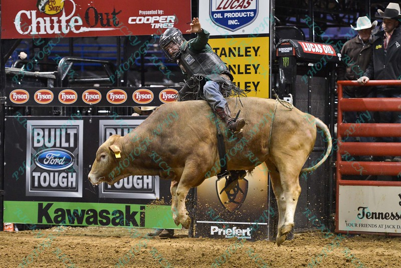 Rider REESE CATES  on bull CLEMENTINE during the third round at the Professional Bull Riders Built Ford Tough Series, Bass Pro Chute Out presented by Cooper Tires at the Scottrade Center in St. Louis, Missouri