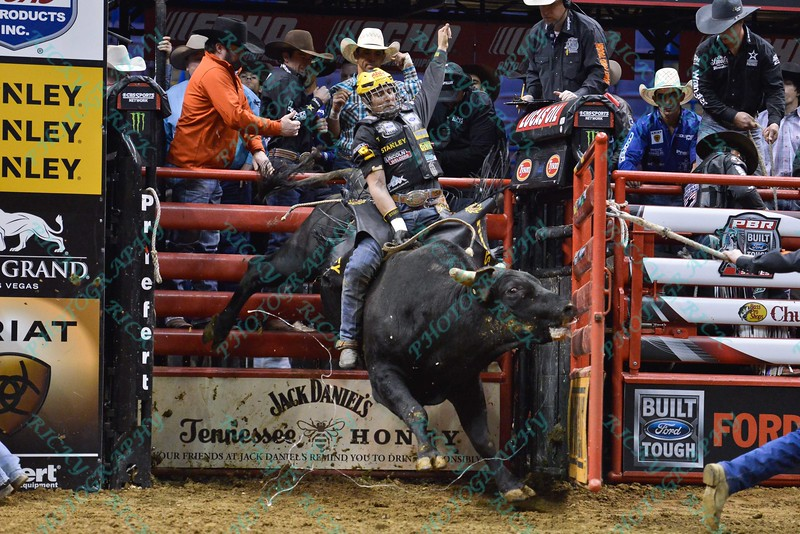 Rider SILVANO ALVES  with bull COWTOWN ROCK during the third round at the Professional Bull Riders Built Ford Tough Series, Bass Pro Chute Out presented by Cooper Tires at the Scottrade Center in St. Louis, Missouri