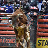 Rider BEN JONES  with bull SHANGHAI HEAT during the third round at the Professional Bull Riders Built Ford Tough Series, Bass Pro Chute Out presented by Cooper Tires at the Scottrade Center in St. Louis, Missouri
