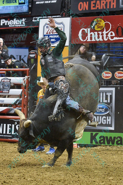 Rider REESE CATES  with bull I'M A GANGSTER TOO during the third round at the Professional Bull Riders Built Ford Tough Series, Bass Pro Chute Out presented by Cooper Tires at the Scottrade Center in St. Louis, Missouri