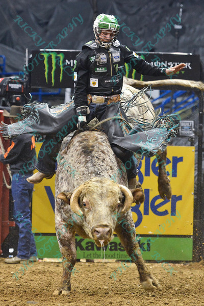 Rider GAGE GAY  completes a successful ride on bull MAC-NETT'S SOUTHERN WINE during the final round at the Professional Bull Riders Built Ford Tough Series, Bass Pro Chute Out presented by Cooper Tires at the Scottrade Center in St. Louis, Missouri