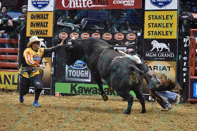 Rider CHASE OUTLAW  with bull SPITBALL during the third round at the Professional Bull Riders Built Ford Tough Series, Bass Pro Chute Out presented by Cooper Tires at the Scottrade Center in St. Louis, Missouri