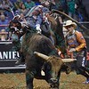 Rider KASEY HAYES  gets bucked off bull WESTERN WAY during the first round at the Professional Bull Riders Built Ford Tough Series, Bass Pro Chute Out presented by Cooper Tires at the Scottrade Center in St. Louis, Missouri