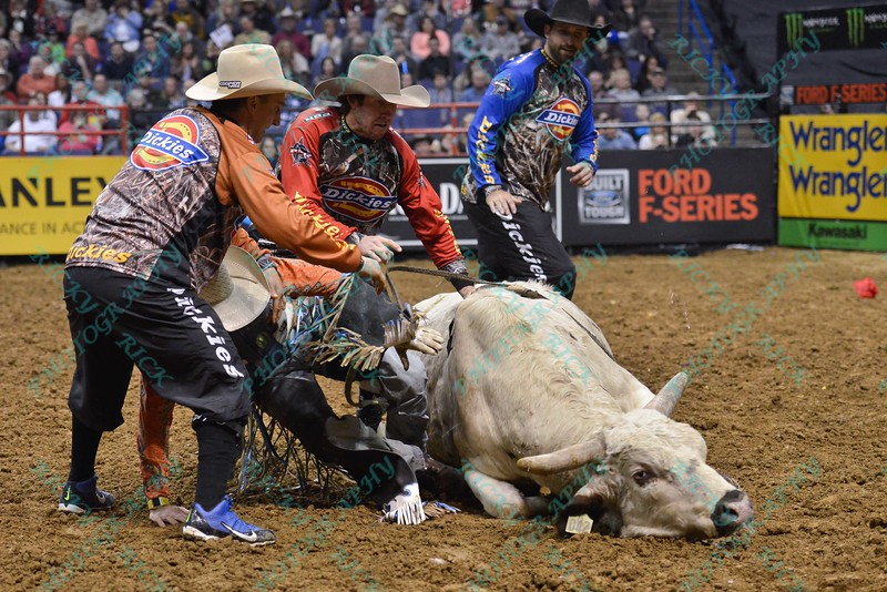 Bullfighter FRANK NEWSOM (orange), Bullfighter SHORTY GORHAM (red) and Bullfighter Lyndel Runyan (blue) try to get Rider DAVE MASON free after bull RIM SHOT falls on him during the first round at the Professional Bull Riders Built Ford Tough Series, Bass Pro Chute Out presented by Cooper Tires at the Scottrade Center in St. Louis, Missouri