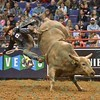 Rider JOAO RICARDO VIEIRA gets tossed from bull TAHONTA'S MAGIC during the second round at the Professional Bull Riders Built Ford Tough Series presented by Cooper Tires at the Scottrade Center in St. Louis, Missouri