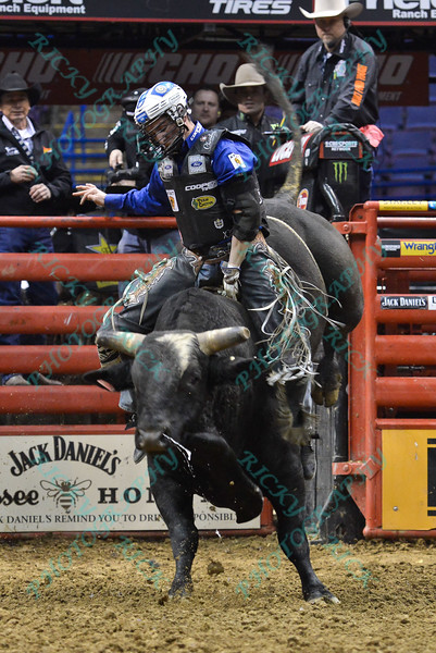 Rider RYAN DIRTEATER  on bull BUTCHERS NIGHTMARE during the third round at the Professional Bull Riders Built Ford Tough Series, Bass Pro Chute Out presented by Cooper Tires at the Scottrade Center in St. Louis, Missouri