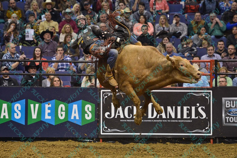 Rider AUSTIN MEIER starts to get bucked from bull MR. U during the first round at the Professional Bull Riders Built Ford Tough Series, Chute Out presented by Cooper Tires at the Scottrade Center in St. Louis, Missouri