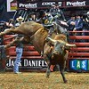 Rider EDUARDO APARECIDO  on bull MCINTYRE TRANSPORTS BACK JACKIN during the second round at the Professional Bull Riders Built Ford Tough Series, Bass Pro Chute Out presented by Cooper Tires at the Scottrade Center in St. Louis, Missouri