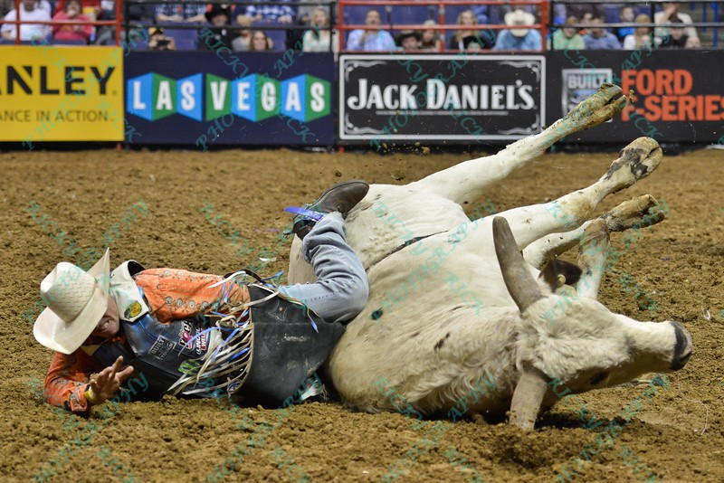 Rider DAVE MASON has his leg trapped under bull RIM SHOT after the fall to the ground during the first round at the Professional Bull Riders Built Ford Tough Series, Chute Out presented by Cooper Tires at the Scottrade Center in St. Louis, Missouri