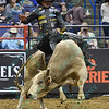 Rider DOUGLAS DUNCAN  on bull STUNTIN LIKE MY DADDY during the first round at the Professional Bull Riders Built Ford Tough Series, Chute Out presented by Cooper Tires at the Scottrade Center in St. Louis, Missouri