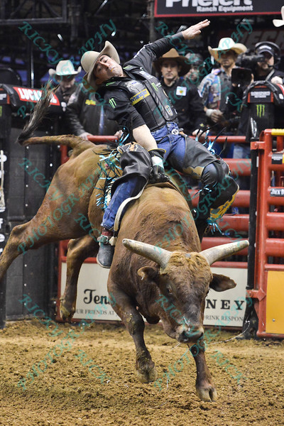 Rider GUILHERME MARCHI completes a successful ride on bull WACEY during the final round at the Professional Bull Riders Built Ford Tough Series, Bass Pro Chute Out presented by Cooper Tires at the Scottrade Center in St. Louis, Missouri