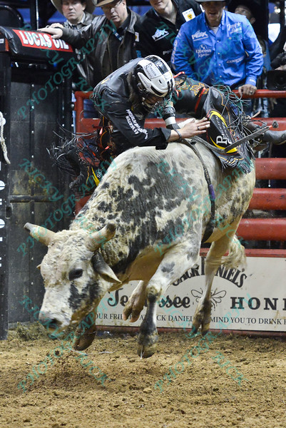 Rider STETSON LAWRENCE during the third round at the Professional Bull Riders Built Ford Tough Series, Bass Pro Chute Out presented by Cooper Tires at the Scottrade Center in St. Louis, Missouri