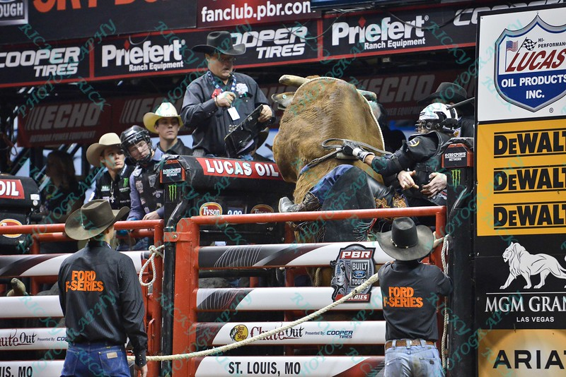 Bull OFF THE GRID attempts to climb out of the chute leaving Rider STETSON LAWRENCE holding on for safety during the final round at the Professional Bull Riders Built Ford Tough Series, Bass Pro Chute Out presented by Cooper Tires at the Scottrade Center in St. Louis, Missouri