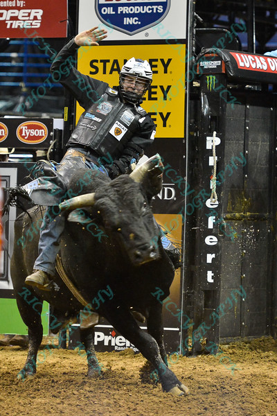 Rider NATHAN SCHAPER on bull SLICK RICK during the third round at the Professional Bull Riders Built Ford Tough Series, Bass Pro Chute Out presented by Cooper Tires at the Scottrade Center in St. Louis, Missouri
