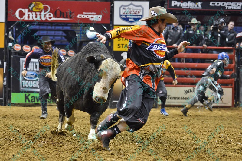 Bullfighter SHORTY GORHAM (red) gets chased by bull COMFORTABLY NUMB during the third round at the Professional Bull Riders Built Ford Tough Series, Bass Pro Chute Out presented by Cooper Tires at the Scottrade Center in St. Louis, Missouri