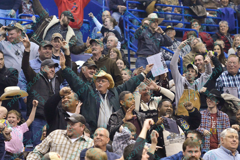 Fans stand up and cheer during the final round at the Professional Bull Riders Built Ford Tough Series, Bass Pro Chute Out presented by Cooper Tires at the Scottrade Center in St. Louis, Missouri