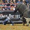 Rider KASEY HAYES  takes a hard fall after being bucked by bull PURE BULL during the final round at the Professional Bull Riders Built Ford Tough Series, Bass Pro Chute Out presented by Cooper Tires at the Scottrade Center in St. Louis, Missouri