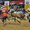 Rider DOUGLAS DUNCAN  on bull XD SPORTS DOUBLE AGENT during the third round at the Professional Bull Riders Built Ford Tough Series, Bass Pro Chute Out presented by Cooper Tires at the Scottrade Center in St. Louis, Missouri