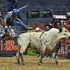 Rider ROBSON ARAGAO flies through the air after being tossed from bull HD during the first round at the Professional Bull Riders Built Ford Tough Series, Chute Out presented by Cooper Tires at the Scottrade Center in St. Louis, Missouri