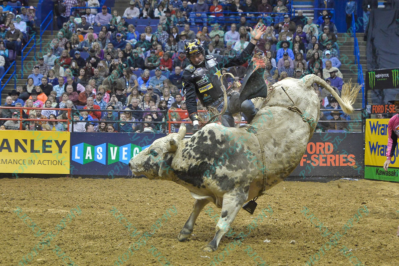 Rider SEAN WILLINGHAM starts to slide off of bull SUNDANCE during the second round at the Professional Bull Riders Built Ford Tough Series presented by Cooper Tires at the Scottrade Center in St. Louis, Missouri