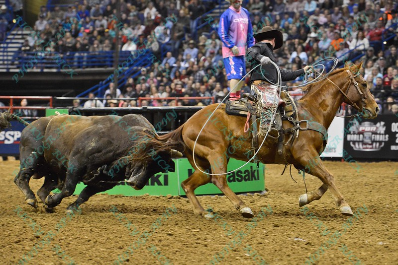 Bull MOUNTAIN WOLF chases the wrangler horse during the second round at the Professional Bull Riders Built Ford Tough Series presented by Cooper Tires at the Scottrade Center in St. Louis, Missouri
