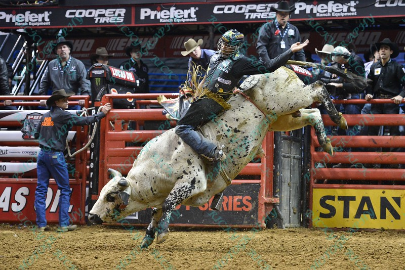 Rider VALDIRON DE OLIVEIRA on bull HD during the third round at the Professional Bull Riders Built Ford Tough Series, Bass Pro Chute Out presented by Cooper Tires at the Scottrade Center in St. Louis, Missouri