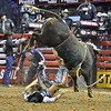 Rider BEN JONES  falls hard on his back after being bucked by bull BLUEGRASS during the final round at the Professional Bull Riders Built Ford Tough Series, Bass Pro Chute Out presented by Cooper Tires at the Scottrade Center in St. Louis, Missouri