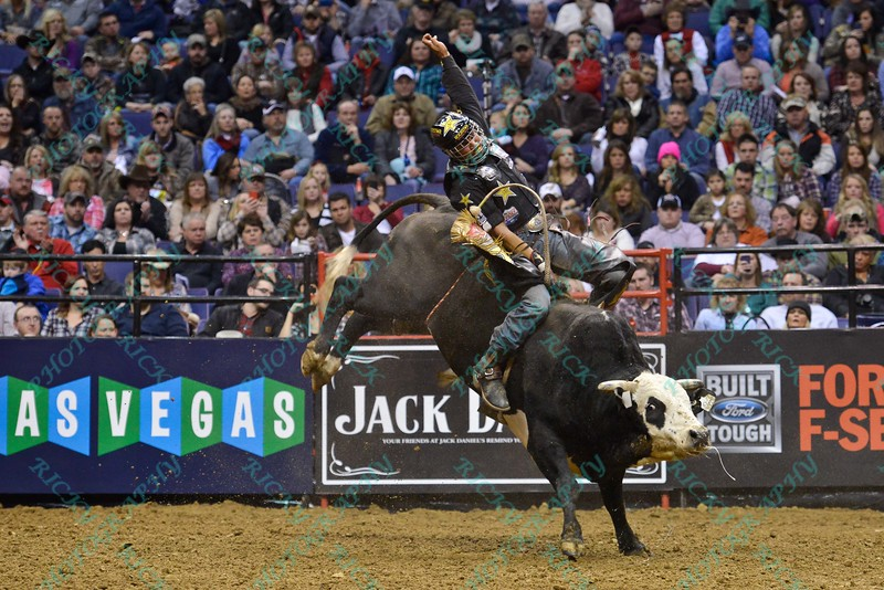 Rider VALDIRON DE OLIVEIRA on bull LITTLE GREMLIN during the second round at the Professional Bull Riders Built Ford Tough Series, Bass Pro Chute Out presented by Cooper Tires at the Scottrade Center in St. Louis, Missouri